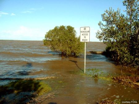 Bluff Lagoon, Tambo Bluff